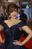 Payal Ghosh aka Harika in Dark Blue Deep Neck Sleeveless Gown at 64th Jio Filmfare Awards South 2017 ~  Exclusive 131.JPG