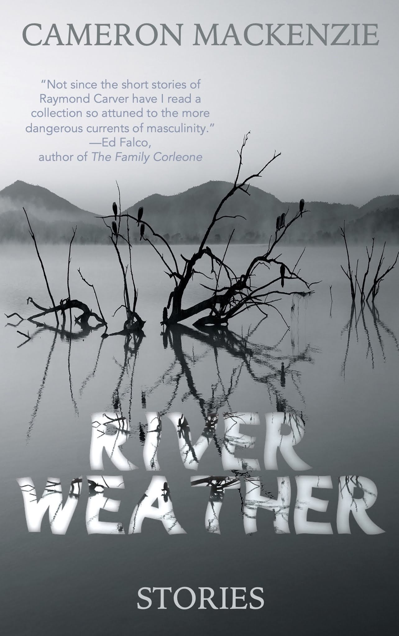 River Weather cover artwork
