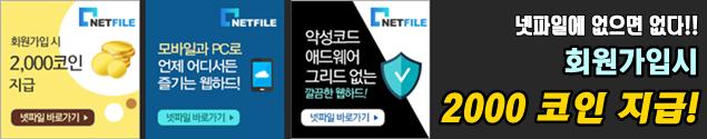 NETFILE.png