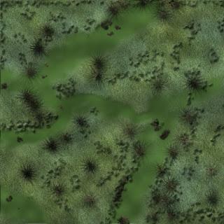 Mapas Rol Exterior Pantano 1
