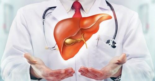 Gejala, Penyebab, dan Mengobati Kanker Hati | Kumpulan ...