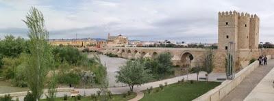 La mejor panorámica de Córdoba se obtiene desde la orilla izquierda del río.