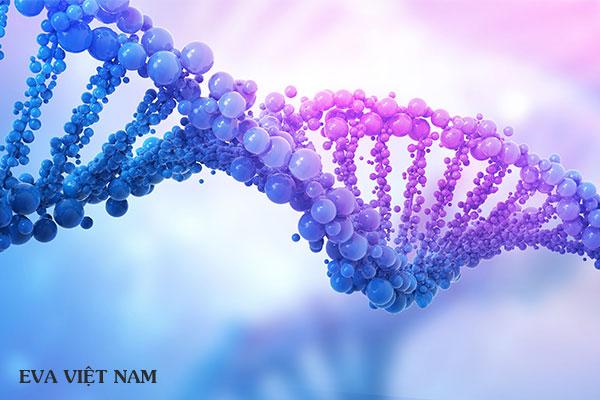 Nguyên nhân gây môi thâm là do gene di truyền
