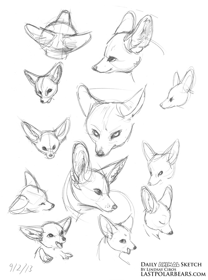 Lindsay Cibos' Art Blog: Daily Animal Sketch