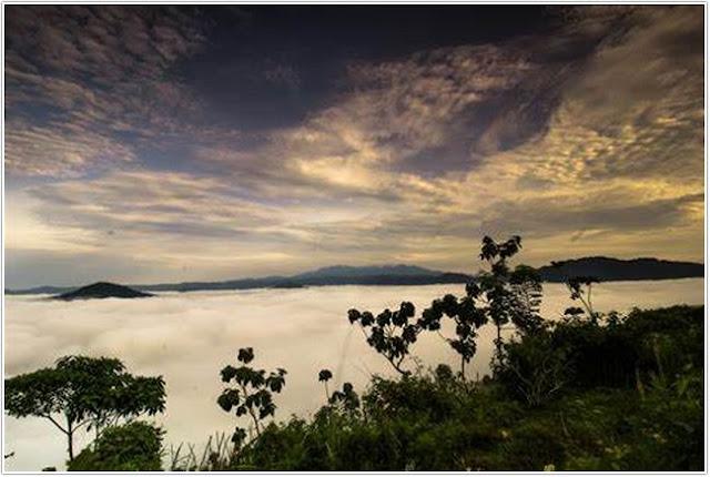 Wisata Bukit Banyon;Destinasi Wisata Trenggalek