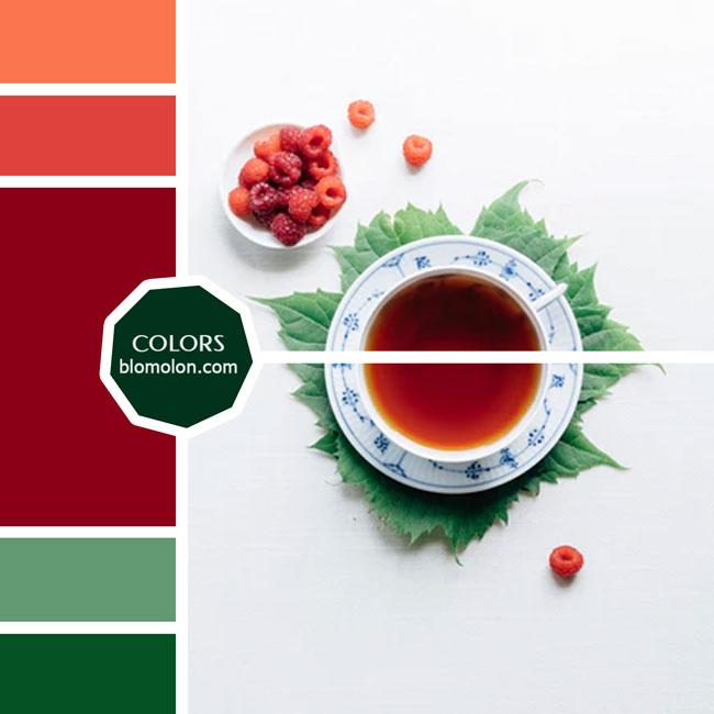 variedad_en_color_moodboard_47