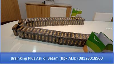 PROMOSI, 08123 01 8900 (Bpk. Alid), Brainking Plus di Batam