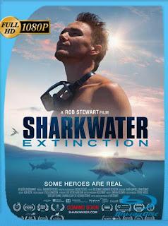 Sharkwater Extinction (2018) HD [1080p] Latino [GoogleDrive] SilvestreHD