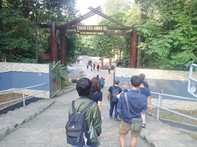 hutan simpan bukit nanas malaysia