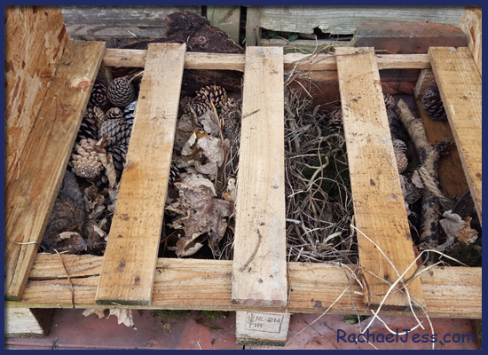Creating the woodland flooring for our bug hotel