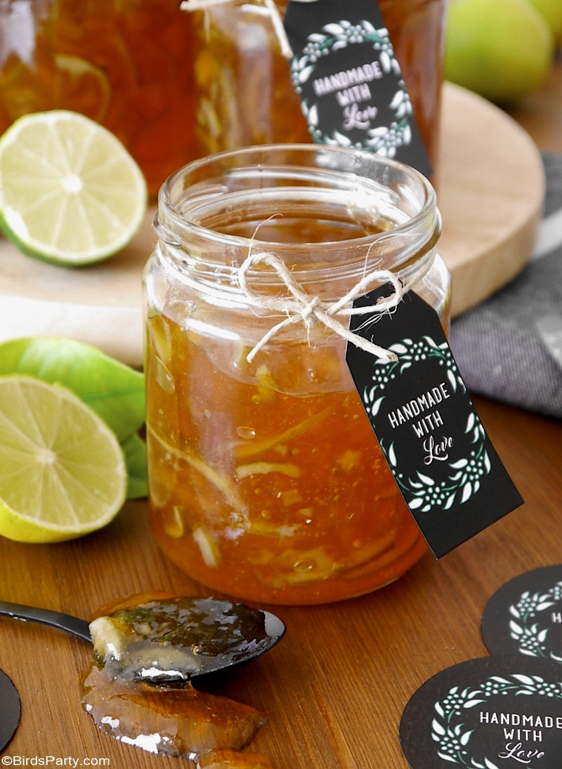 Homemade Lime Marmalade Recipe & Printable Gift Tags - easy and inexpensive, edible Christmas gift idea, perfect for hampers or a Holiday cheese board! by BirdsParty.com @birdsparty #marmelade #limes #limemarmelade #citrusrecipe #recipe #ediblegifts #christmashamper #christmasgifts #handmadegifts #homemadegifts #ediblechristmasgifts
