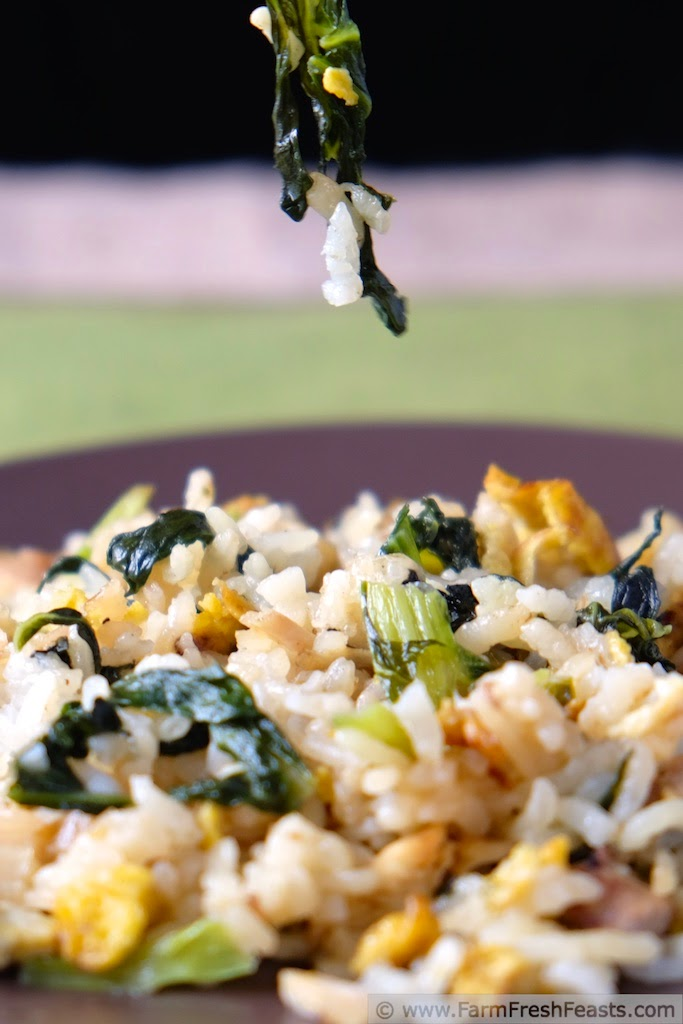 http://www.farmfreshfeasts.com/2015/03/tatsoi-fried-rice-with-turkey.html