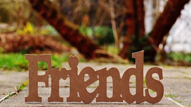 Letras em madeira foram a palavra friends, com fundo de calçada e plantas