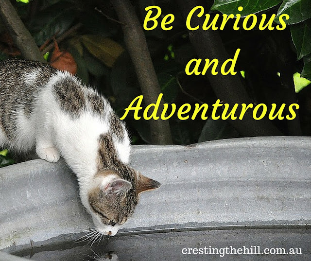 don't get stuck in a rut - be curious and adventurous
