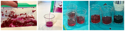 Natural pH indicator from rose petals