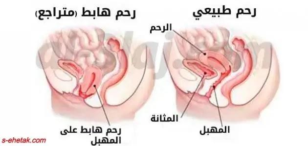 وصفات لتنظيف الرحم