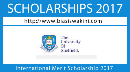 International Merit Undergraduate Scholarships 2017