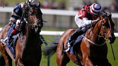 2yo horse racing tps
