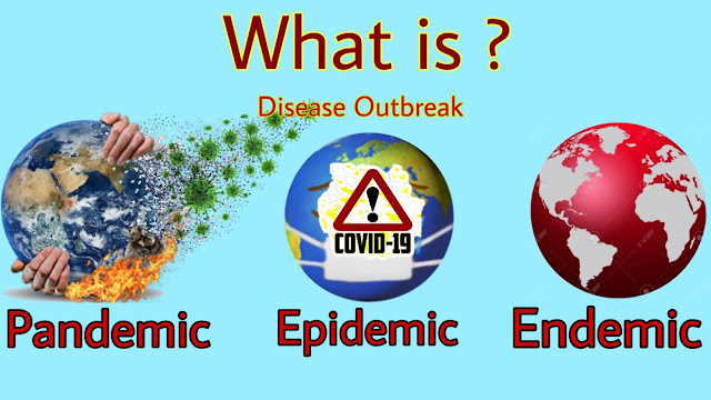 Epidemic, Endemic, and Pandemic: differences and characteristics.