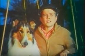Lassie nagy kalandja