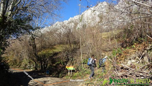 Cruce de caminos entre Isorno y Puru Cabreru