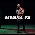 VIDEO & AUDIO | Mwana FA - We Endelea Tu | Download/Watch