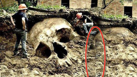 Esqueletos gigantes escondidos - veja a prova de falsificação