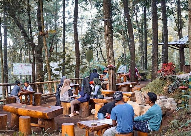 Kedai Hutan Cempaka Pasuruan Jawa Timur