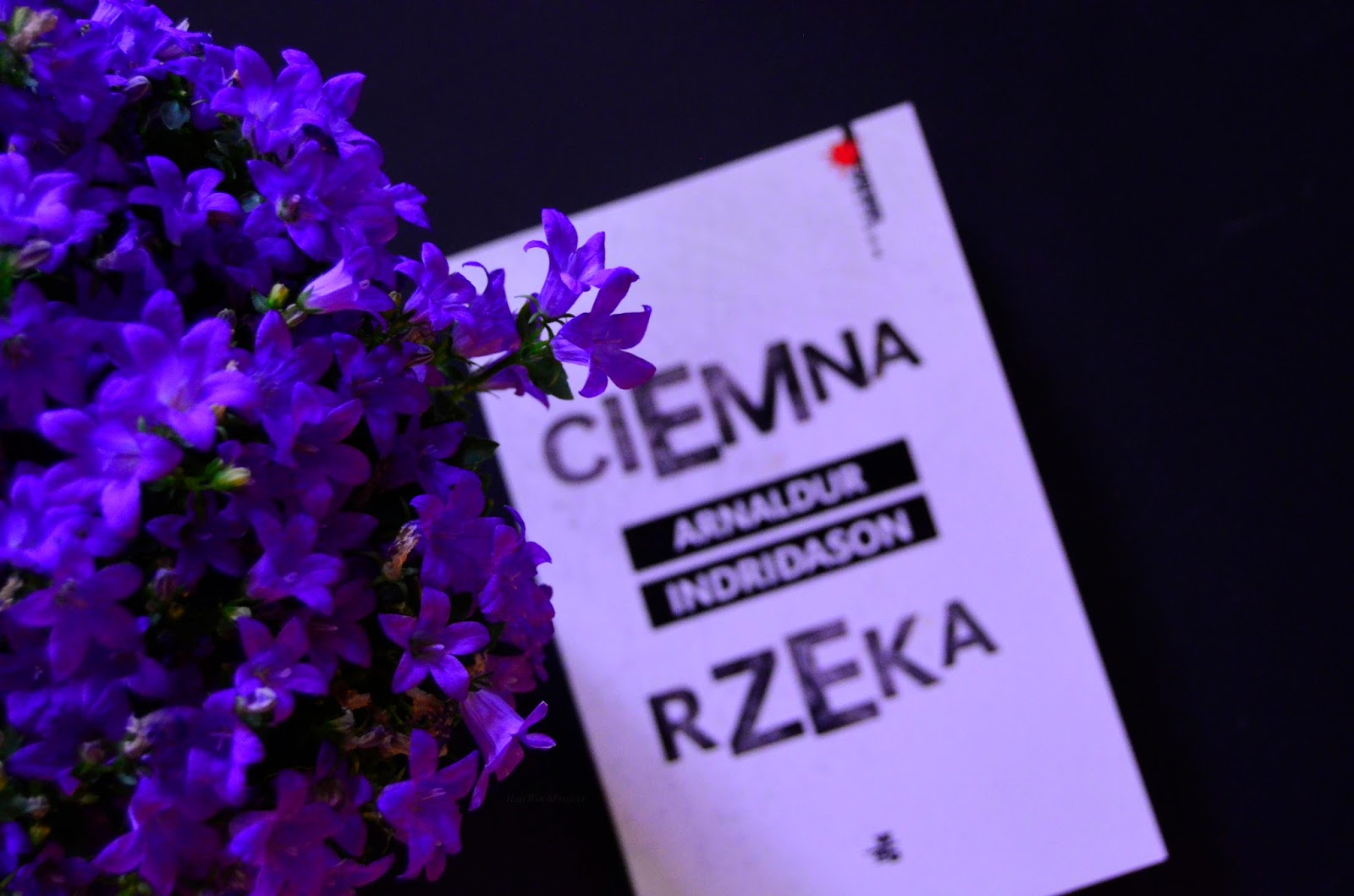 ciemna rzeka   książka   recenzja   kwiat
