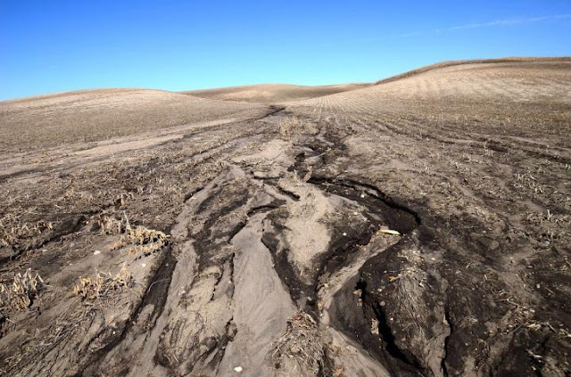 Human activities boosted global soil erosion already 4,000 years ago