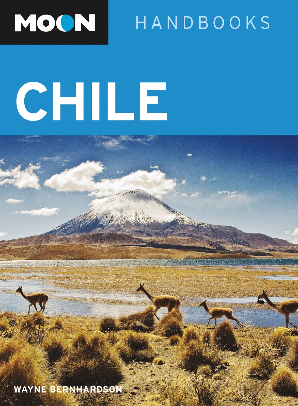 Southern Cone Travel: Against The Wind? Chile's Patagonian