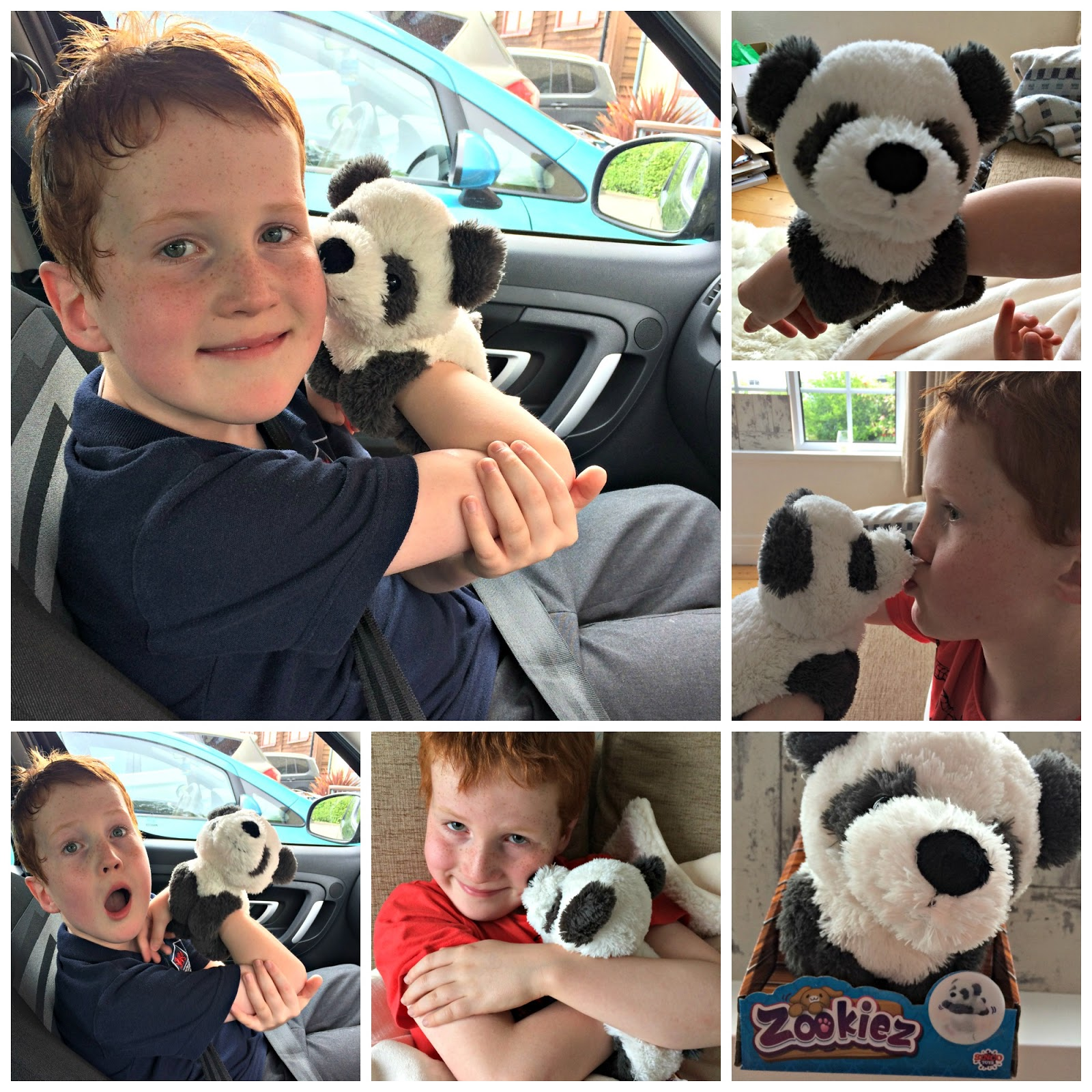 Collage of Ieuan Hobbis demonstrating the Zookiez Panda