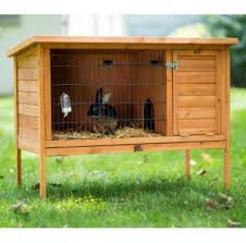 Kandang Ternak Kelinci Yang Efektif Untuk Usaha Ternak Kelinci
