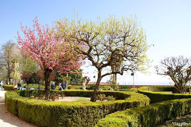 Aiuole e alberi del Giardino del Castello Reale di Govone