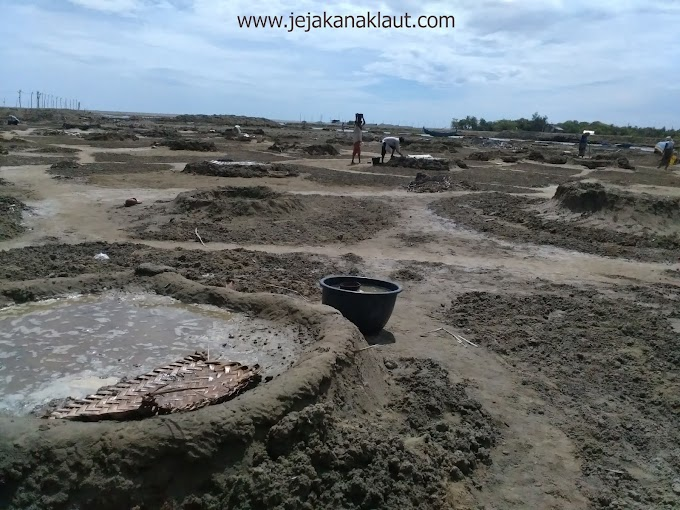 Tsunami dan Langkanya Petani Garam Di Aceh Besar