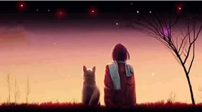 Picture: a boy and his dog looking at the twinkling stars