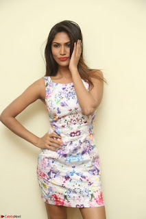 Nishi Ganda stunning cute in Flower Print short dress at Tick Tack Movie Press Meet March 2017 070.JPG