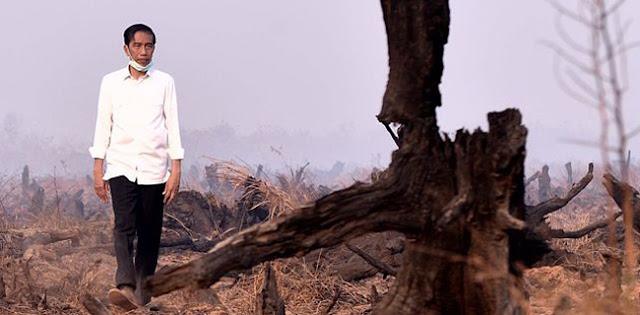 Pak Jokowi, Kebakaran Hutan Dan Lahan Tidak Bisa Diatasi Dengan Jargon