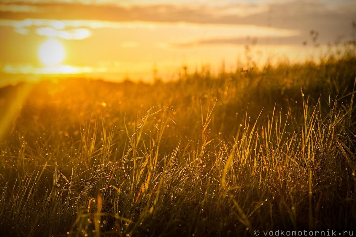 Рассвет в полях