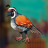 AvmGames Myna Bird Escape