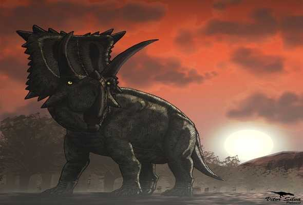 coahuilaceratops-dinasour-كايويلسيراتوبس-ديناصور