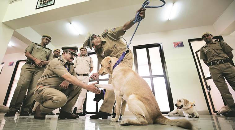 Section 27 of PCA Act, 1960 permits the training of animals for bonafide military or police purposes lawescort