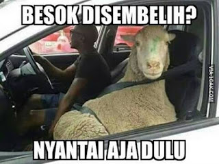 """Meme Kartu Ucapan Selamat Hari Raya Idul Adha"""