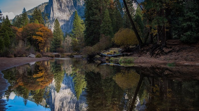 Montanhas, Lago, Reflexão, Floresta, Natureza