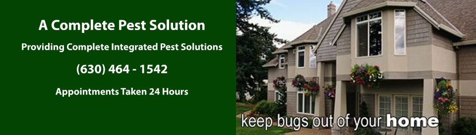 A Complete Pest Solution