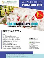 We Are Hiring at PT. Laris Manis Utama Surabaya Terbaru Desember 2019