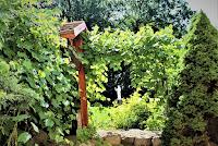 Woźniki - Klasztor Franciszkanów - w ogrodzie