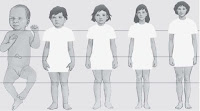 pertumbuhan dan perkembangan fisik manusia, pelajaran ipa kelas 6