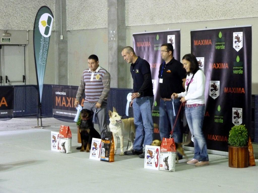 Can de Palleiro 1er. Lugar Concurso de Mascotas.