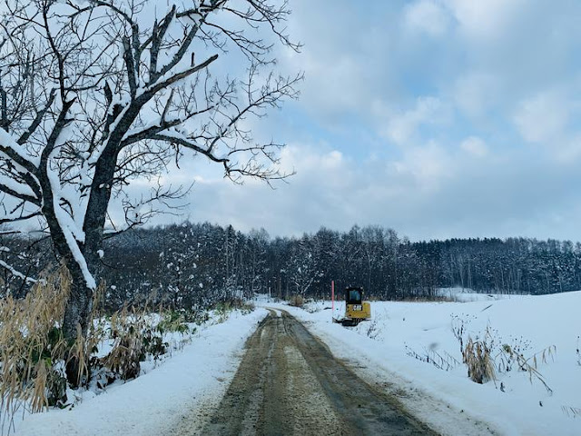 嵐山展望台的道路